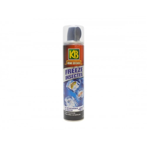 INSECTES EFFET GIVRANT 500ML